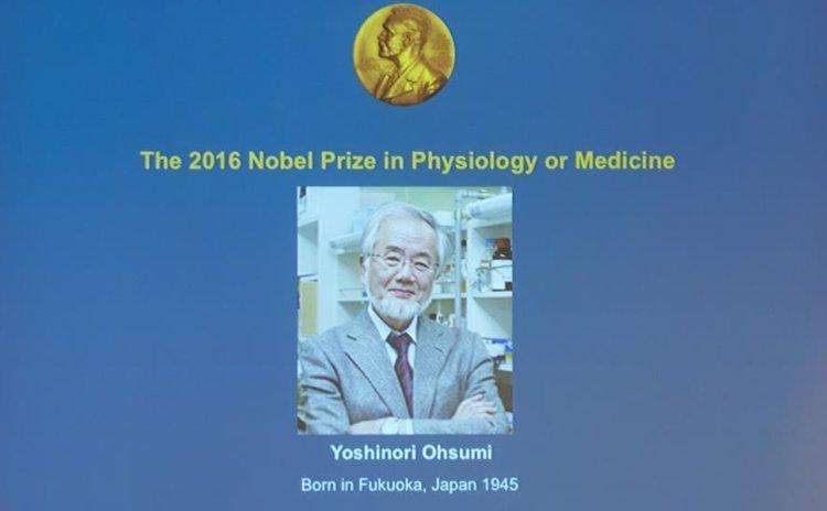PPT of Nobel Prize Award