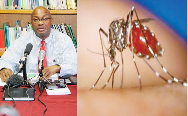 Dr David Johnson and Zika-spreading mosquito