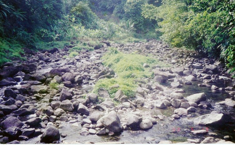Almost-dry river in the north east of Dominica