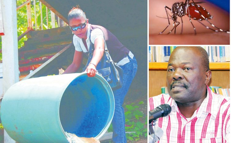 Environmental Health Officer empty drum; Jefferson Scotland, Chief Environmental Health Officer; engorged mosquito