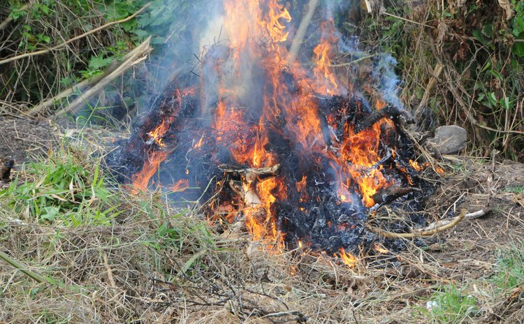 Burning bush; Fire Service says don't do that during the drought