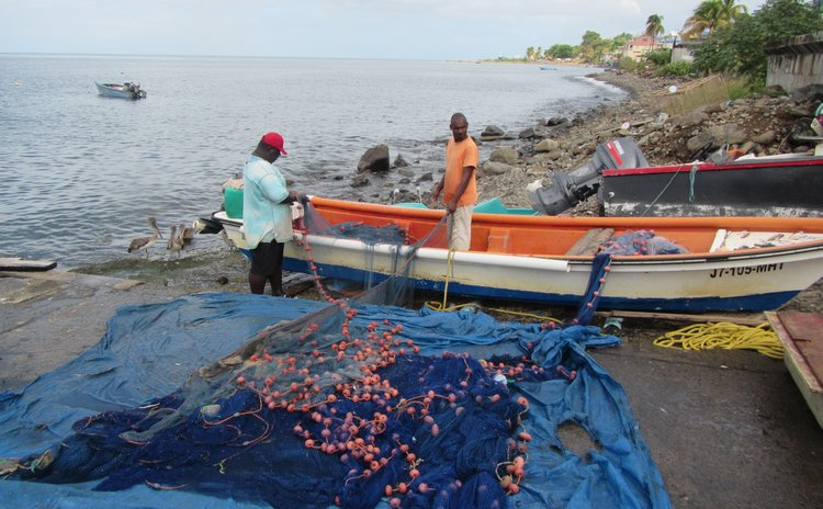 Fisheries in Dominica (FAO photo)