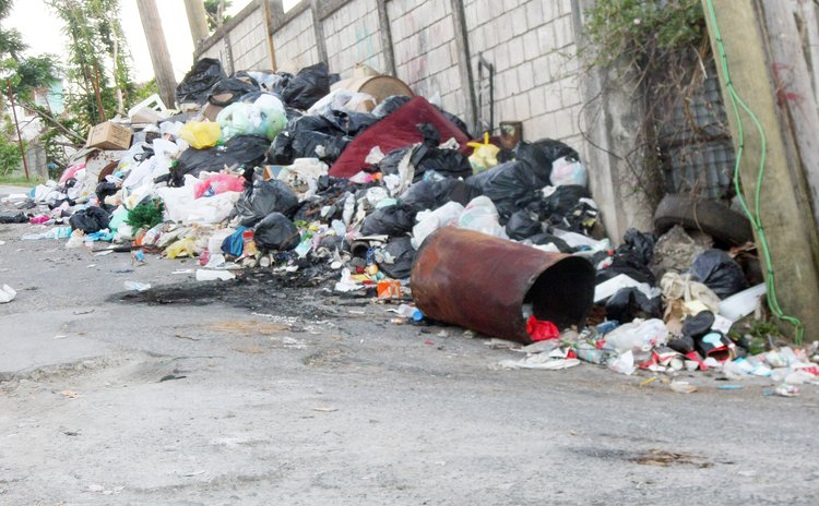 Garbage on Bowers Lane