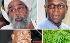 Clockwise: Henry Shillingford, Dr Griffin Benjamin, Marijuana plants and Ian Douglas