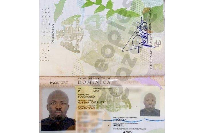 Dominican passport holder from Nigeria
