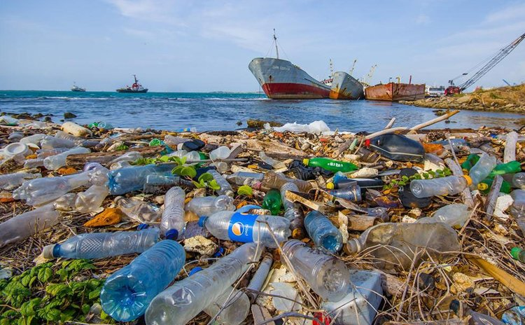 Plastics in the environment