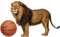 Only one team named LIONS has played national league basketball